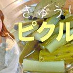 料理動画*野菜たっぷりおかずでダイエット!【cooking】簡単便利な作り置き♪きゅうりのピクルス Pickled cucumbers