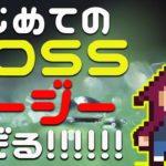 ボス戦が一番簡単なんじゃ…【スーパーウイローディメイク】#2