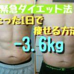 [ダイエット]たった1日で-3.6kg!!緊急ダイエット法#簡単に体重を落とす
