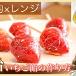 【糸飴付き】いちご飴の作り方!レンジ×100均×少量 簡単に飴細工風 ドライフルーツも!