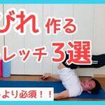 【ダイエット初心者必須!】簡単な動きでくびれ作りストレッチ3選!筋トレする前に必ずやって!!