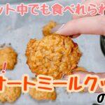 【ダイエット】簡単オートミールクッキーの作り方!【ねこ日記】