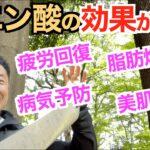 【#121】筋トレ、ダイエットには必須なクエン酸の効果がヤバすぎた。日本なら簡単に○○で摂れる。