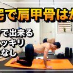 【5分で肩甲骨はがす】自宅で簡単に出来るストレッチ!