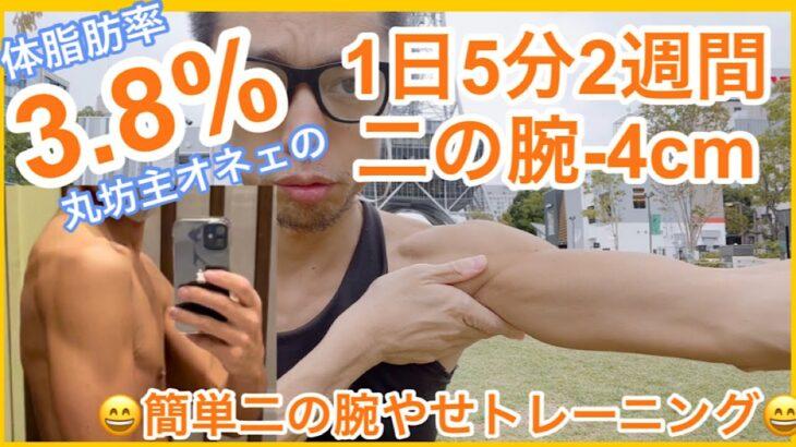 【二の腕-6cm】簡単ストレッチ1日5分で二の腕うらのお肉がなくなる!?