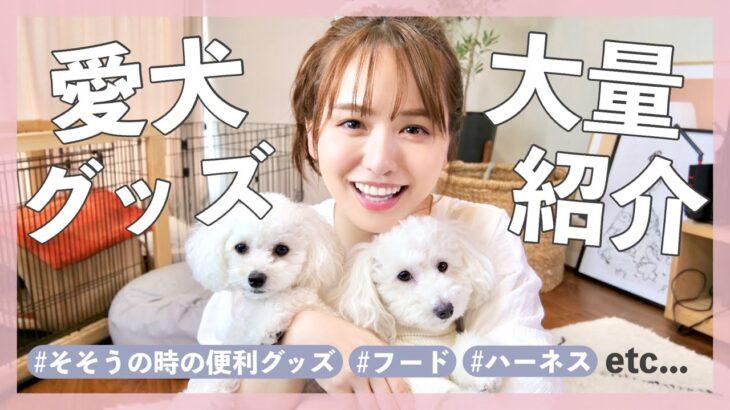 【必見】便利すぎる愛犬グッズ達を大量紹介♡!