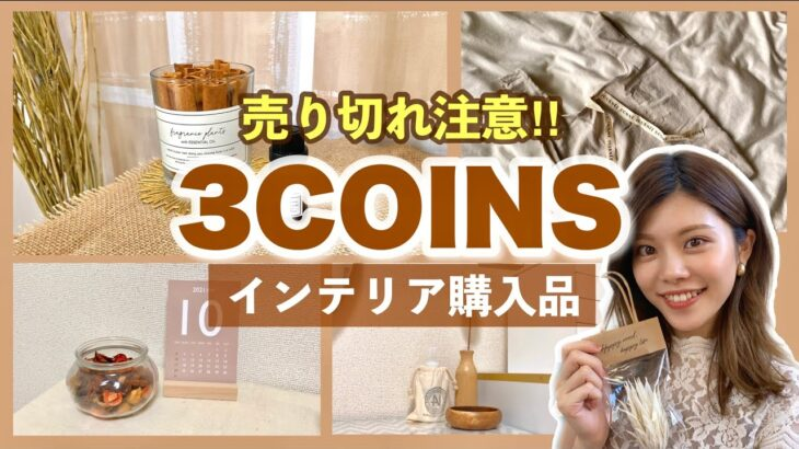 【3COINS購入品】売り切れ注意!新作インテリアが可愛い🌼ドライフラワーやエコバッグも!
