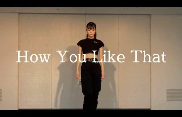 【How you like that】 【covered MAIKA】