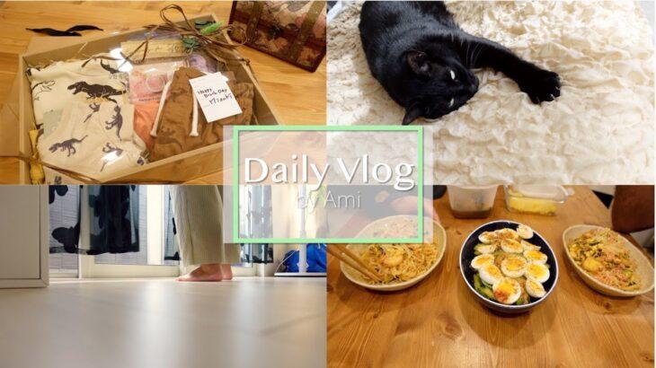 【Vlog】プレゼントのラッピング,業務スーパー,タイ料理🇹🇭二日間の晩ご飯